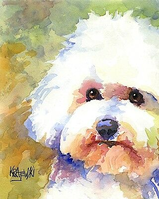 Bichon Frise Dog 11x14 signed art PRINT RJK painting