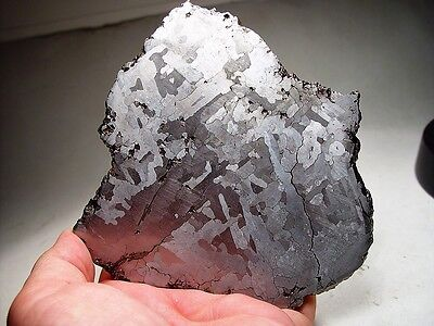 Museum Quality! Expertly Etched Slice! New Campo Del Cielo Meteorite 705 Gms