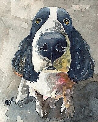 Springer Spaniel Dog 11x14 signed art PRINT RJK