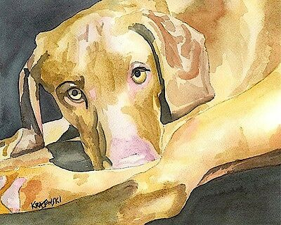 Vizsla Dog 11x14 signed art PRINT RJK painting