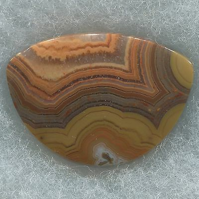 Beautiful Collector Quality Dryhead Agate Designer Cab Montana