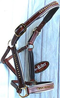 Horse Riding Leather English Brown Halter with Gold Bling 927MT08P