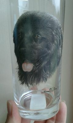 A  Collectable NewFoundland Dog Drinking Glass