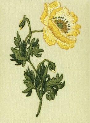Oriental Poppy Anchor  Embroidery Kit (Pe121) Flower, Pretty