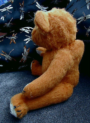 """Antique French 10"""" teddy, Pintel? Fadap? from a Paris flea market in the 80's"""
