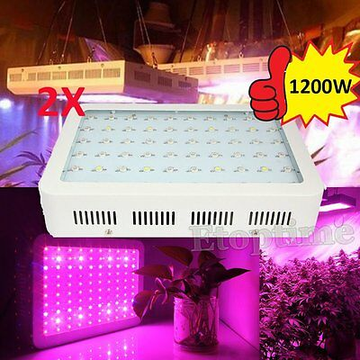 2PCS 600W 1000W 1200W Double Chip LED Grow Light Indoor Plants Fruits Veg Bloom