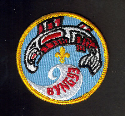 """Boy Scouts Canada Camp Byng Haida B.c. 1993 Badge 3"""" Embroidered Patch"""