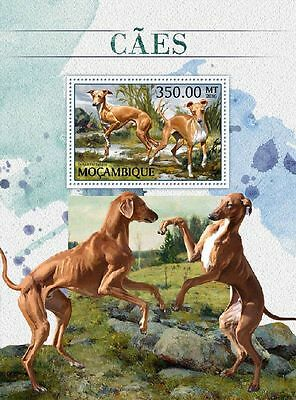 MOZAMBIQUE 2016 ** Dogs Hunde S/S #502b