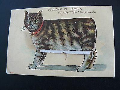 Souvenir of Ipswich Postcard Mailing Novelty Manx Cat Miss Youngs Kessingland