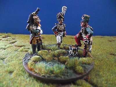 Napoleonic French Command Unit Perry Minatures 28mm Painted