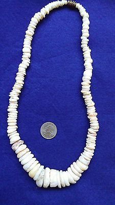 Fantastic Old Vintage Hawaiian Graduated Natural Puka Shell Necklace With Clasp