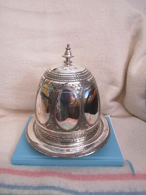 Gorgeous ~ Silver Plated ~ Tea Caddy ~ Bell Shape ~ Domed ~ Claw Feet