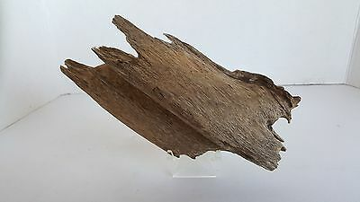 A 115 g  old piece agarwood chip , good sweet scent......
