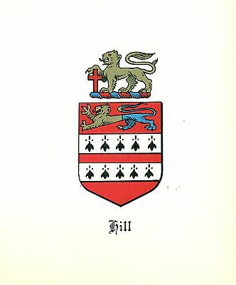*Great Coat of Arms Hill #1 Family Crest genealogy, would look great framed!