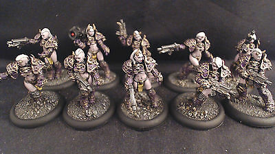 Warhammer 40k Chaos Space Marines Emperors Children Pro Painted