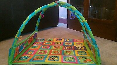 Early Learning Centre play mat and arch for a baby