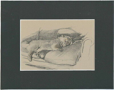"""Chow-Chow Dog by Cecil Aldin 1934 8X10"""" Matted Sepia Print"""