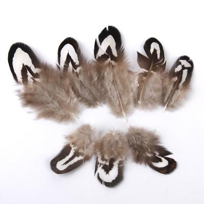 50pcs Pheasant Chicken Flank Feathers 2-7cm Fly Tying Millinery Dreamcatcher