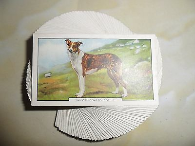 F/s 48 Cards Gallahers Dogs 2Nd Series Issued 1938.cat.val £24.