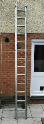 23ft Youngman 2 Section Ladders