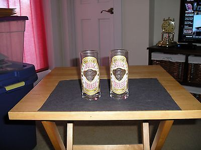 Lot Of (2) Silver Tequila Corralejo Tall Shot/shooter Glasses~Embossed Lettering