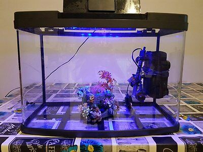 fish tank 60L heater light and filter
