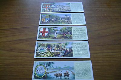 Important Industries Of The British Empire Full Set Cards By Typhoo Tea Ltd
