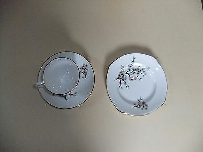 Duchess Bone China - Cup / Saucer / Side Plate - Pink / Green Flowers