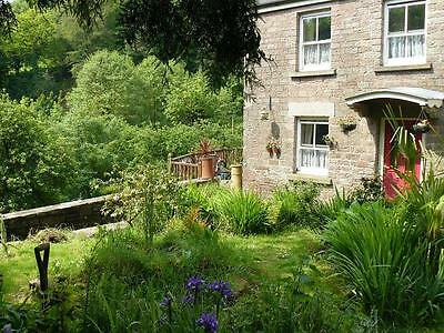 17-20th March weekend 2 nights dogfriendly cottage Forest of Dean