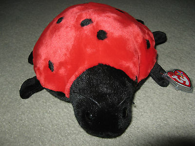 Lucky Ladybird Ty Beanie Buddie (Buddy) - Stored since Purchase. Tag with Cover.