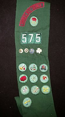 Lot Girl Scout Badges Patches Pins Buttons Sash Vtg 1960s  Charlotte NC