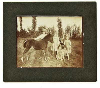STAR, IDAHO 1900's Antique Cabinet Photo Kids with Young Colt - Names on Back