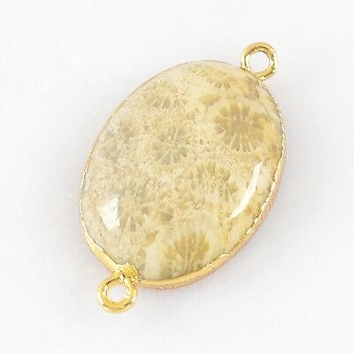 Oval Natural Coral Fossil Connector Gold Plated H83024