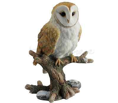 Barn Owl Perching On Branch Statue Sculpture Figurine - GIFT BOXED