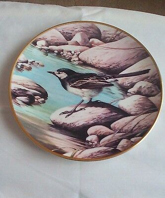 Wedgwood Collectors Plate RSPB Centenary Collection PIED WAGTAIL