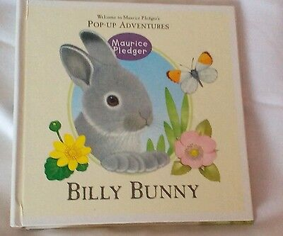 Maurice Pledger Pop Up Adventure Book Billy Bunny