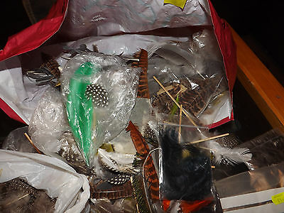 Lot 4 Nice Vintage Assorted Lot Of Fly Tying Feathers Assorted Lucky Dip