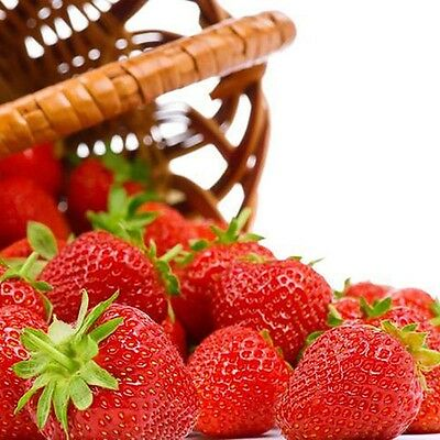 200 PC Strawberry Seeds Supersweet Nutritious Delicious Fruit Vegetables Seed B1