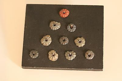 A group of Egyptian glazed beads in the form of daisy flowers