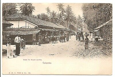 Colombo, Ceylon (Sri Lanka) - Road to Mount Lavinia. Vintage PC RP.