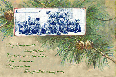 Scottish Terrier Puppy Dogs M. Kirmse New LARGE Blank Christmas Note Cards