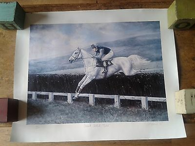 2 Rare Collectable Desert Orchid Nashwan Limited Edition Signed Racing Prints