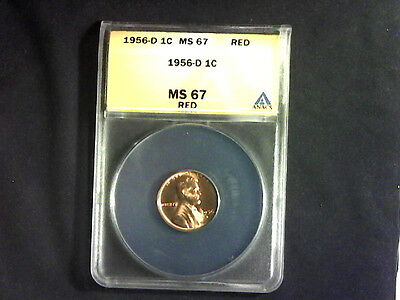 1956 D Lincoln Wheat Cent..ANACS MS 67 RD Top Pop!