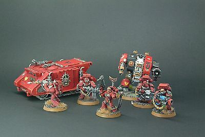 Well Painted Space Marine Blood Angels Army Pack