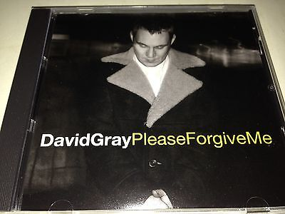 David Gray Please Forgive Me 2 Track Rare Oop Promo Remix Cd Free Shipping