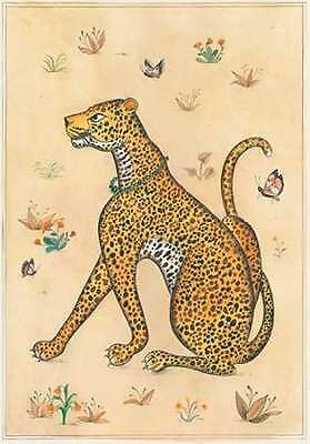STAMPA-poster-Leopard-indiano-Animali-cm84x58