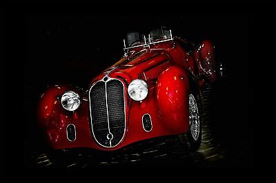 Black White Red Wheat And Flowers Wall Mural Photo Wallpaper GIANT WALL DECOR