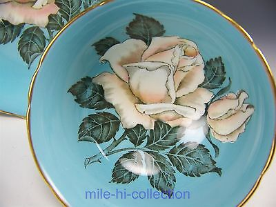 Beautiful Paragon Huge White Cabbage Roses Blue Tea Cup And Saucer
