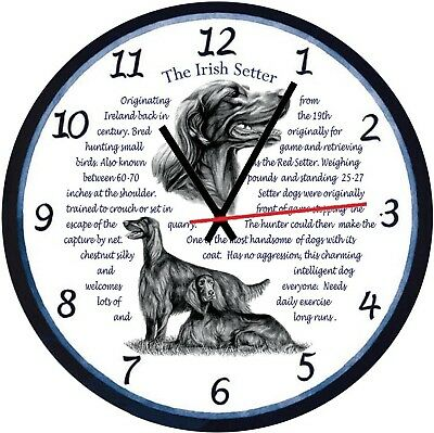 Irish Red Setter  Origins & Facts Gift Boxed Wall Clock