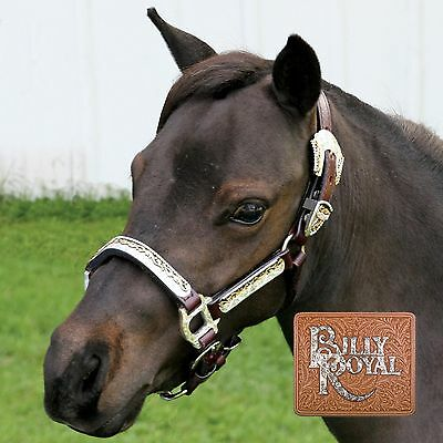 Billy Royal Texas Classic Miniature Horse Show Halter NEW